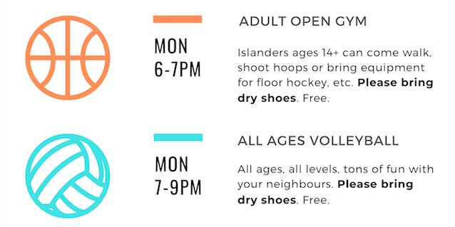Adult Open Gym @ Amherst Island Community Centre